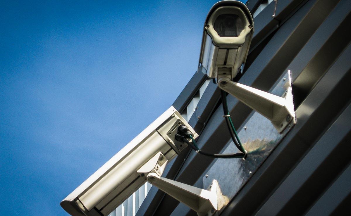 Photo of Pas de caméras de surveillance dans les abattoirs
