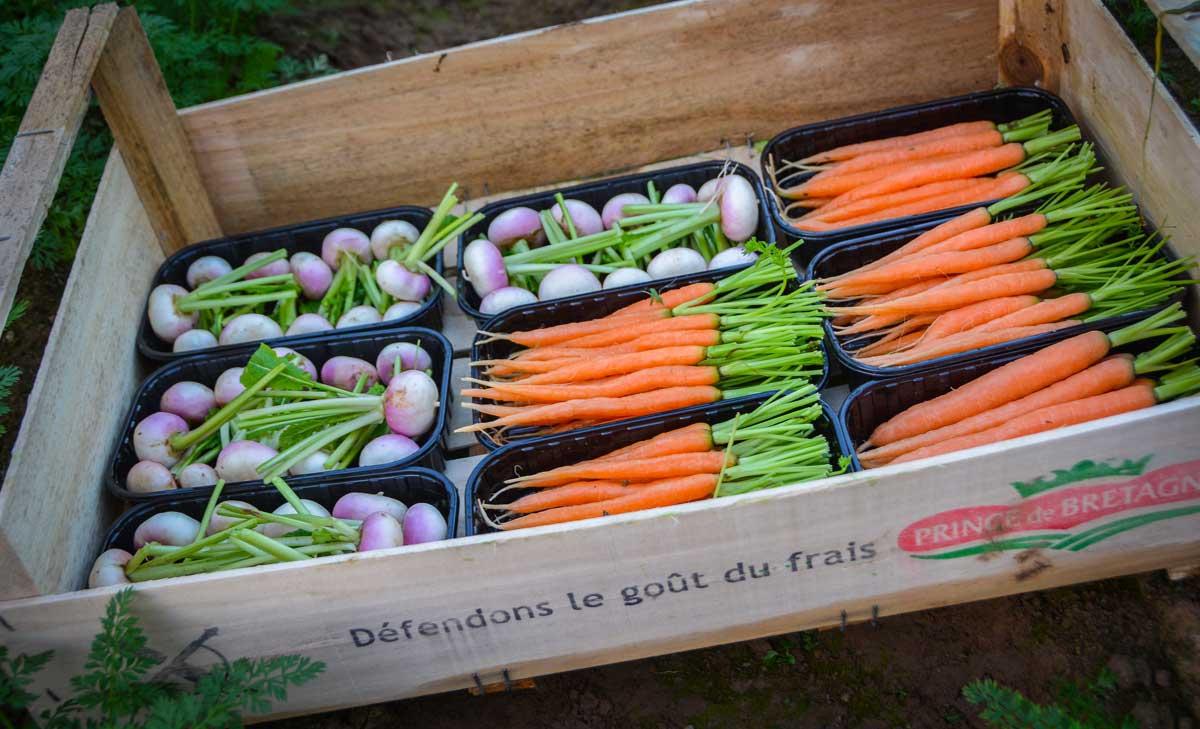 Photo of Maxi soins pour mini-légumes