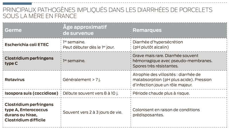 pathogene-diahrree