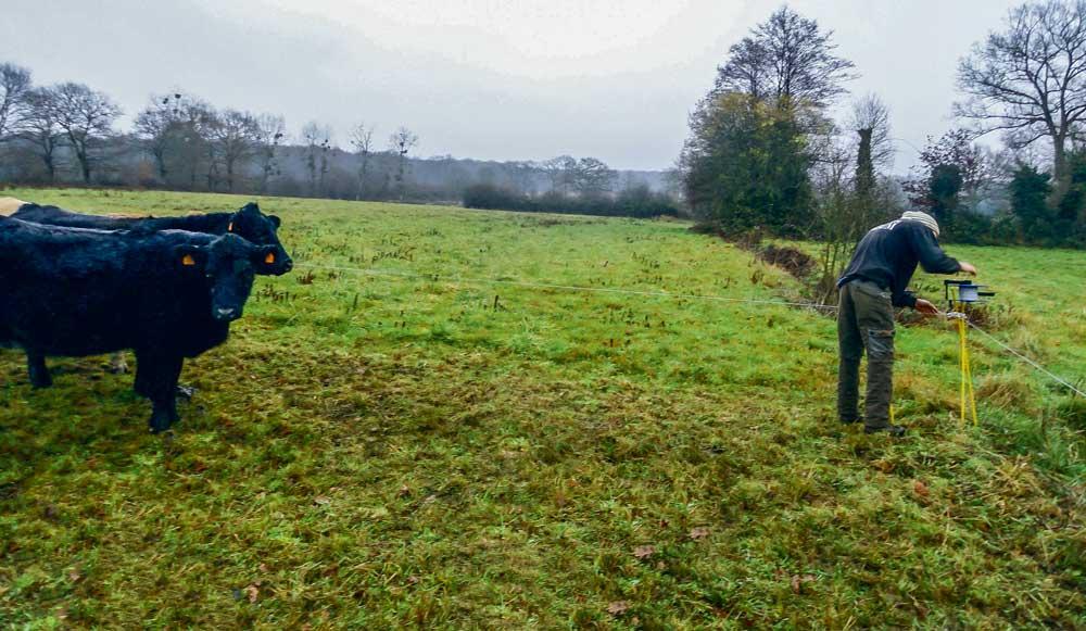 Photo of Le pâturage hivernal, une opportunité à saisir
