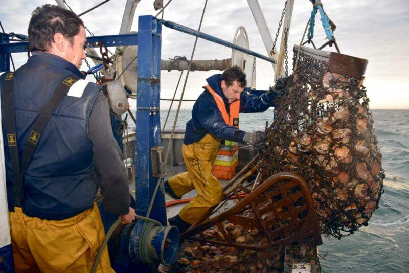 Sur L'Emma-Loan, Guillaume Denigot, patron-pêcheur, fait équipe avec Cédrick Hervel le temps de la saison des coquilles Saint-Jacques.