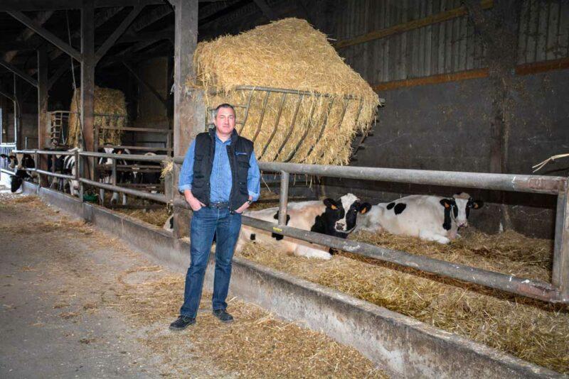 « Les vaches taries ont leur espace spécifique avec un box de vêlage, dans le bâtiment servant aussi aux génisses et taurillons », explique Stéphane Fournier.