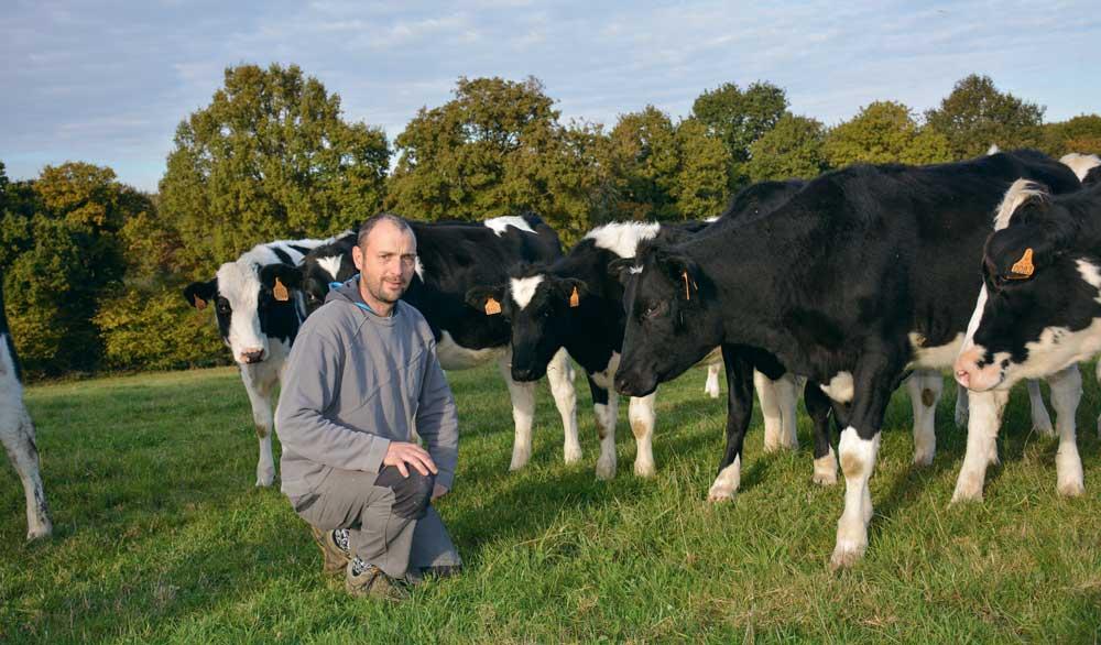 Photo of Des prairies dynamiques pour une production laitière constante