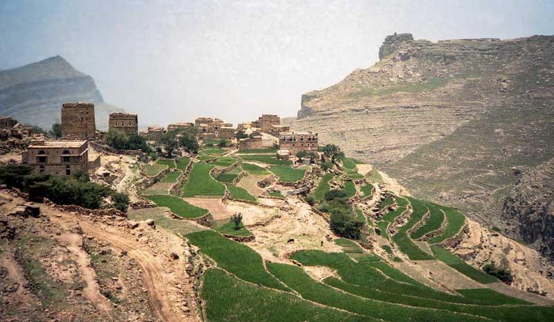 Photo of Yemen : l'UE investit 12M€ pour soutenir des projets agricoles avec la FAO