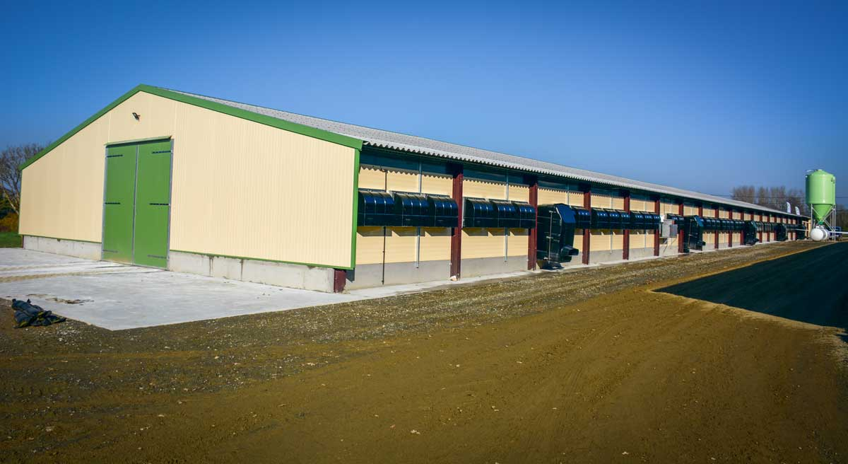 Photo of Un poulailler neuf polyvalent de 1200 m2