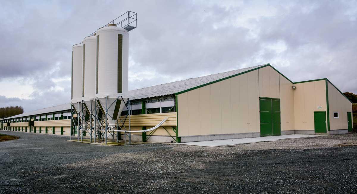 Photo of 4200 m² spécialisés en poulet lourd