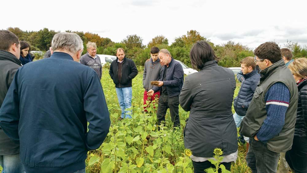 Formation Agrosol sur le thème « réussir ses semis de céréales en non-labour »