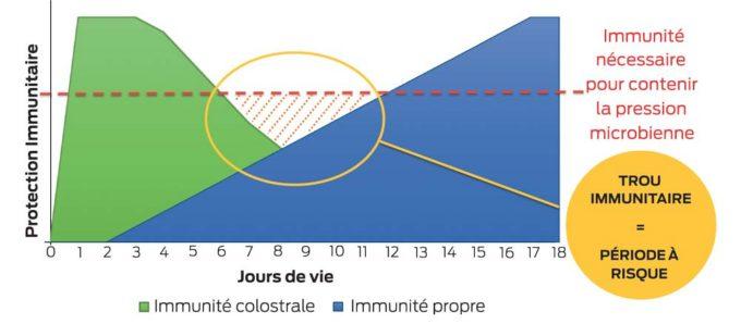 trou-immunitaire