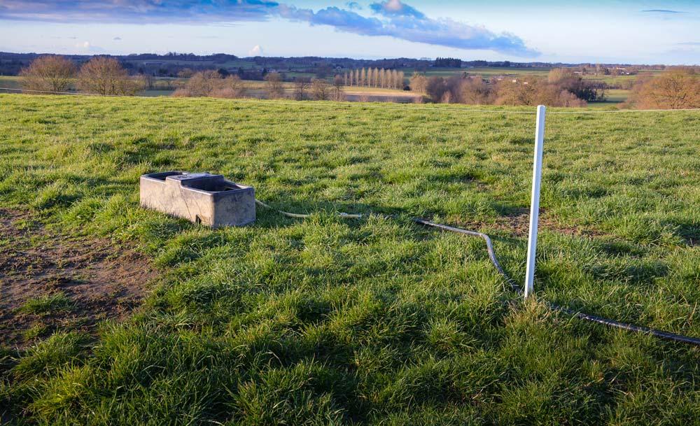 Photo of Viande bovine : Plus d'autonomie avec le pâturage tournant dynamique
