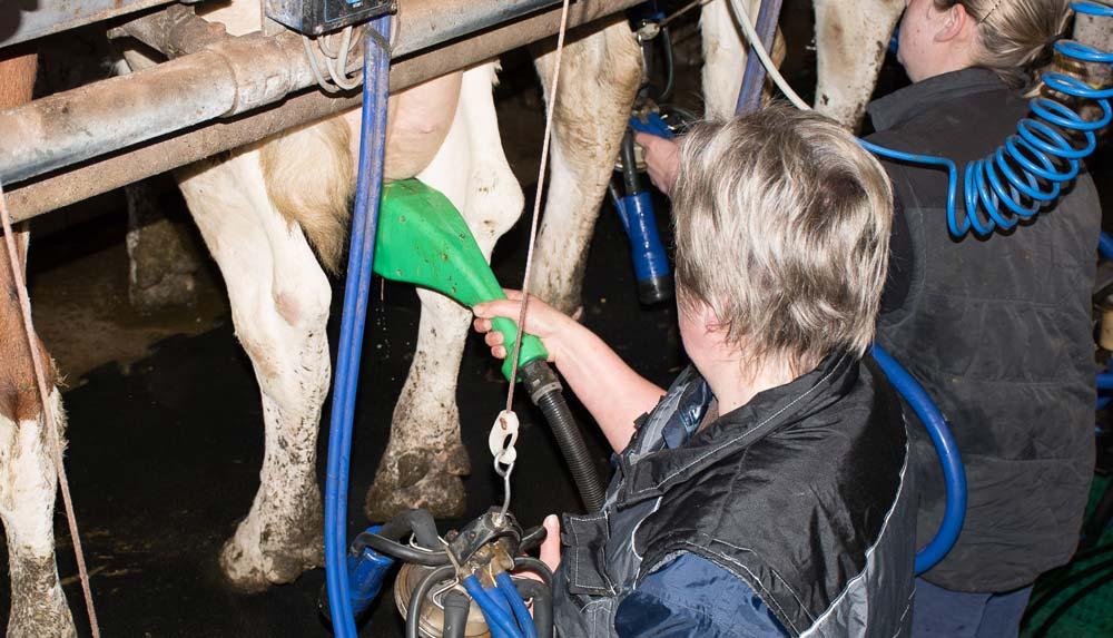 brosse-rotative-hygiene-traite-lait