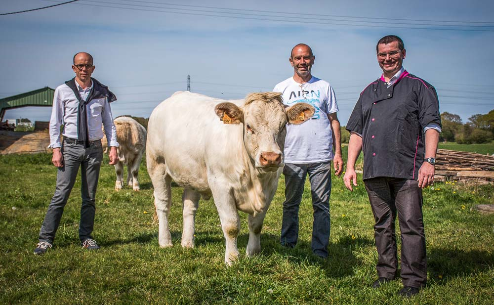 Photo of Aux Terralies, la viande bovine veut faire du bruit