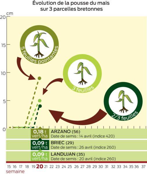 GRAPH-EVOLUTION-MAIS