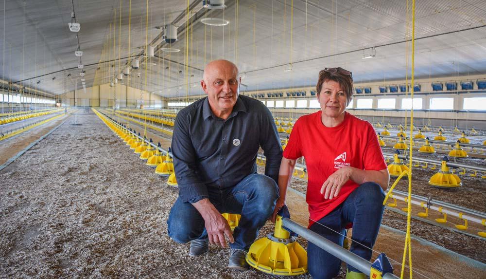 Photo of 4000 m2 de poulaillers remplacent les 75 laitières