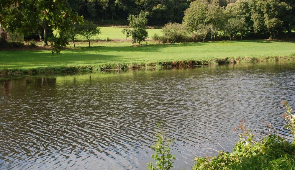 Photo of L'ONB observe une baisse des phytos dans les cours d'eau