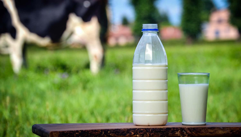 lait-bouteille-crise