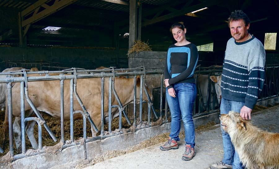 """Photo of Viande bovine : une qualité d'alimentation pour répondre au """"Label Rouge"""""""