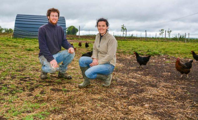 Clément Le Heritte et Séveryne Mouille, aviculteurs bio à Plouay possèdent aussi quelques pondeuses pour répondre à la demande en œufs bio de leurs clients.