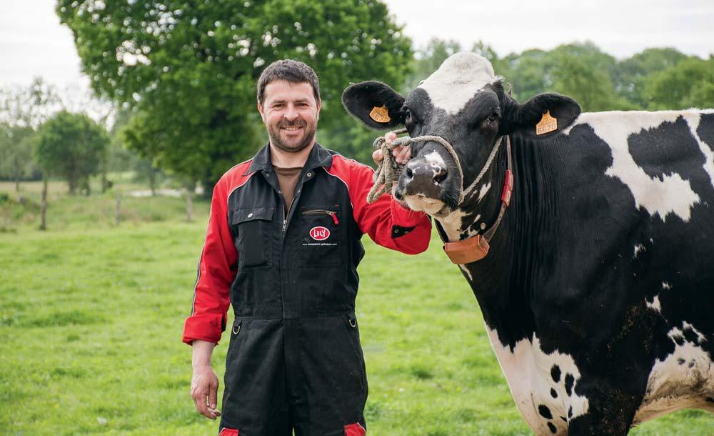 Photo of Concours Prim'Hosltein : au carrefour des plus belles vaches bretonnes