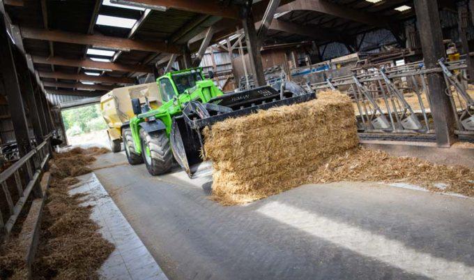 L'éleveur pousse les refus avec un big de paille en même temps qu'il distribue la ration.