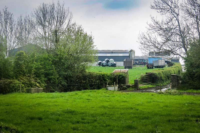 Photo of Irlande laitière : Être rentable sans crouler sous le travail