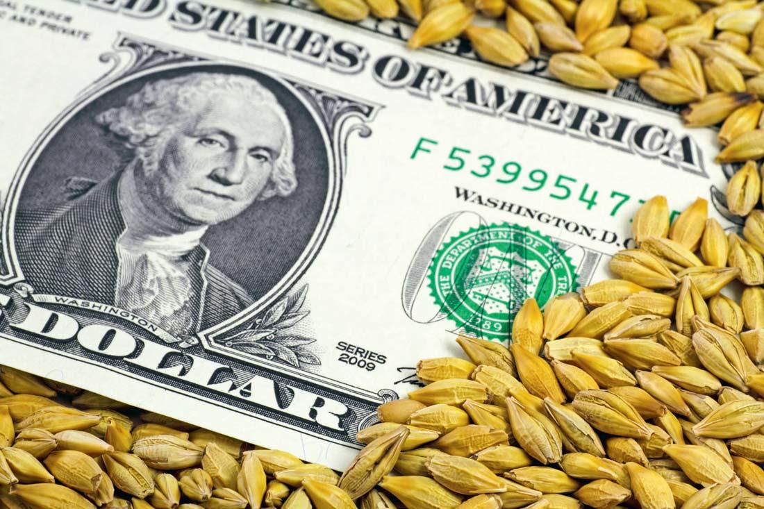 Photo of Grosse déprime pour le prix du blé tendre