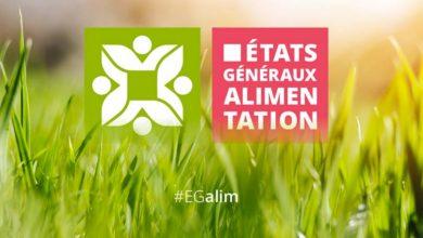 Photo of EGAlim : l'atelier 14 lance une réflexion sur un label pour les conventionnels