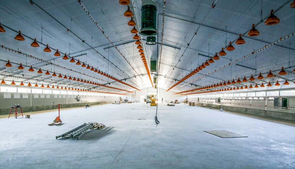Photo of Un nouveau bâtiment volailles de chair pour assurer l'avenir