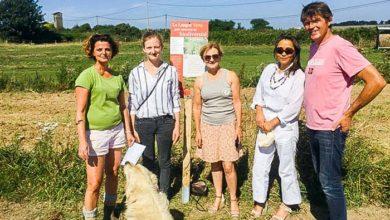 Photo of Légume Project est ouvert tout l'été