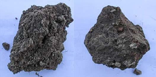 Deg. à dr : mottes poreuses (type gamma) et mottes tassées (type delta).