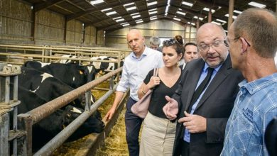 Photo of Encourager une agriculture économique et sociale