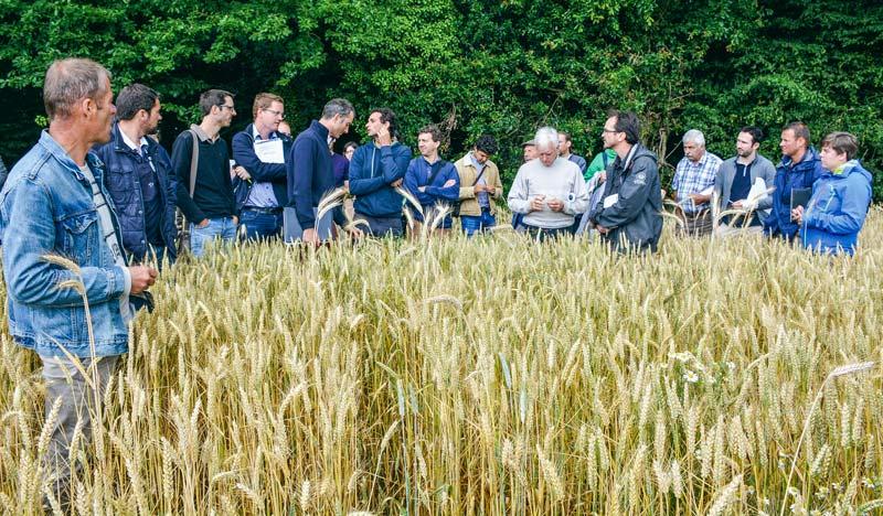 La ferme de Karim Elouali à Noyal-sur-Vilaine (146 ha en grandes cultures bio) a été visitée lors de la journée interprofessionnelle.