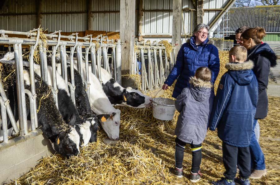Photo of Le weekend à la ferme prend du galon !