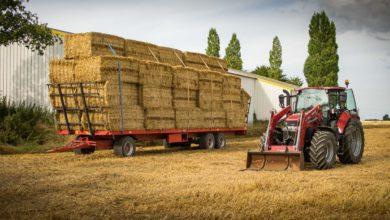 Photo of La récolte française de blé tendre estimée à 37,3 Mt