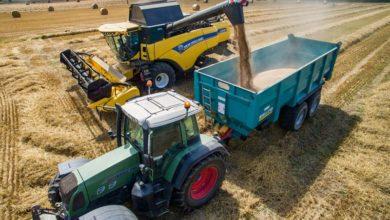 Photo of Blé tendre : le ministère de l'Agriculture estime la récolte à 36,8Mt
