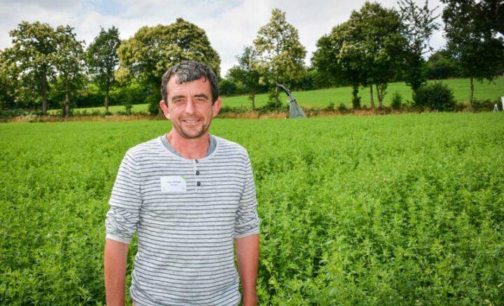 Jean-Philippe Guines, devant une parcelle de luzerne et de trèfle, assurant l'apport de fourrage frais dans la ration de ses 95 vaches laitières.