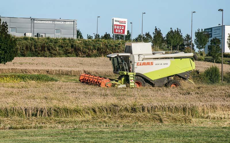 Mardi 22 août, à Broons, les Jeunes Agriculteurs ont moissonné les parcelles qu'ils avaient implantées en blé en novembre dernier.