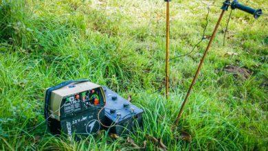 Photo of Conseil clôture électrique : des châtaignes aux normes