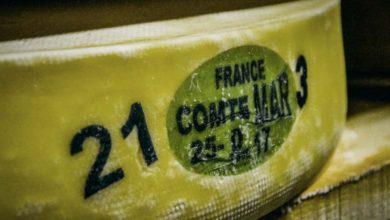 Photo of AOC Comté, une filière organisée et solidaire