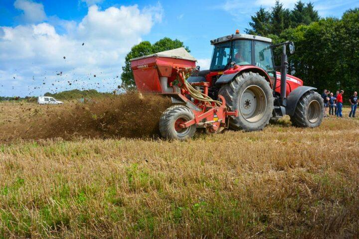 Le semis du Horsch SemExact sera comparé à d'autres matériels, en mesurant le pourcentage de levée et le nombre d'adventices.