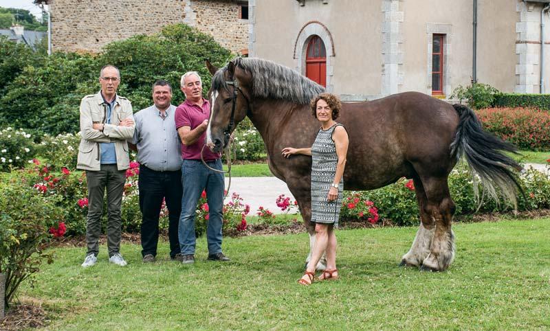 Serge Le Chapelain, Pascal Cousin et Patrice Ecot accompagne l'étalon Donald dans les jardins du Haras national de Lamballe.