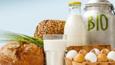 Photo of Vents porteurs pour les produits biologiques
