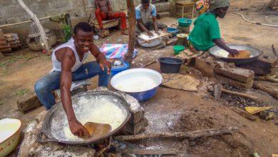 Photo of Au Bénin, un nouveau souffle pour l'agriculture