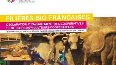 Photo of Engagement des coopératives de l'Ouest dans les filières bio françaises
