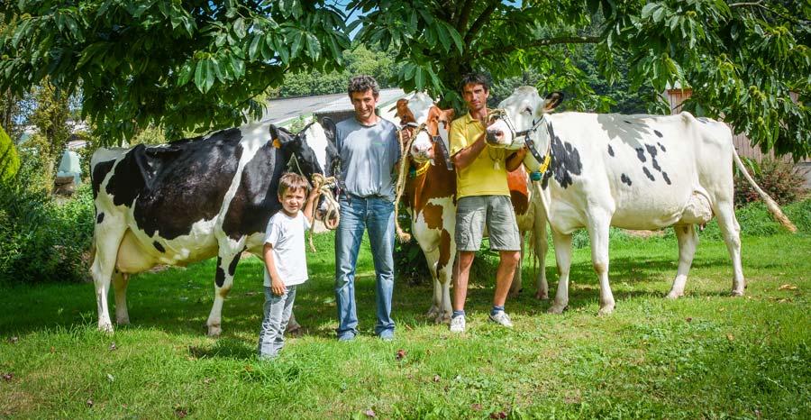 Sacha, Éric et David Morin attendent le Space 2017 avec impatience à l'ombre d'un châtaignier. Le Gaec compte cette année sur Elinda, Idole et Johana pour représenter dignement l'élevage.