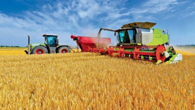 Photo of Moissons : le blé réduit à sa deuxième plus faible récolte depuis 2004