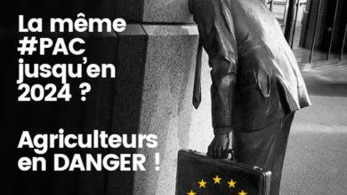 Photo of Eurodéputés et PAC : Non-assistance à agriculteurs en danger ?