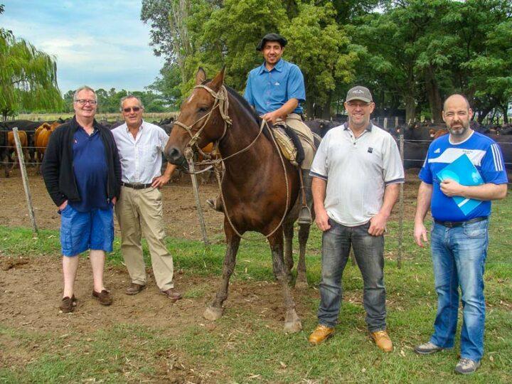 Carlos Munar, responsable du Centre génétique Eolia (2e à gauche) a guidé Thierry Kerneis (2e à droite) et son frère, Mickaël, ainsi que Jean-Luc Cornec, éleveur à Plonéis, à la découverte d'élevages de sélection argentins.