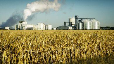 Photo of Des évolutions qui changent ladonneen biocarburants
