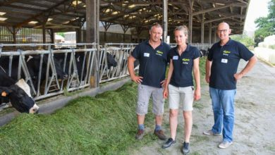 Photo of 8000 kg de lait par les fourrages
