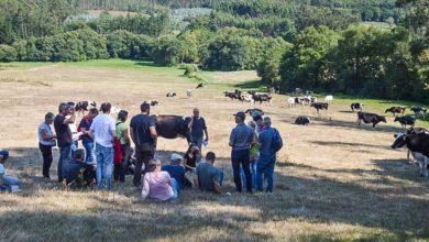 Photo of Les éleveurs de l'Adage à la découverte de la Galice